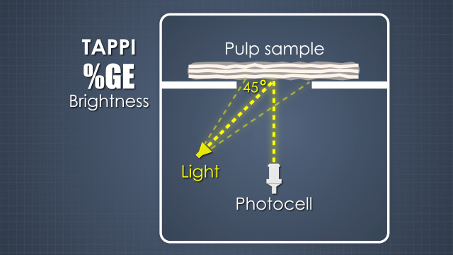 Pulp Bleaching Basic Principles - Convergence Training