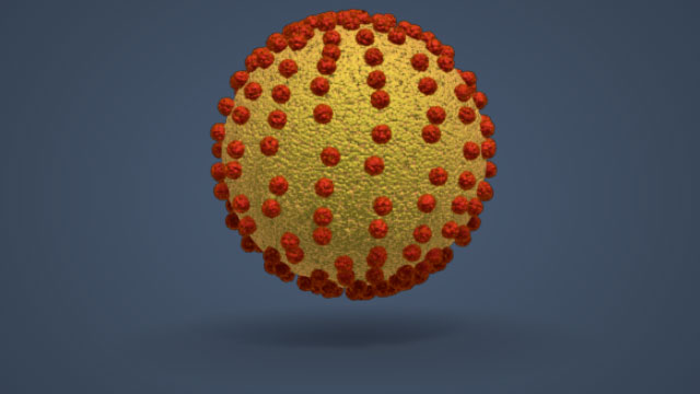 3D Render of a Hepatitis B Cell