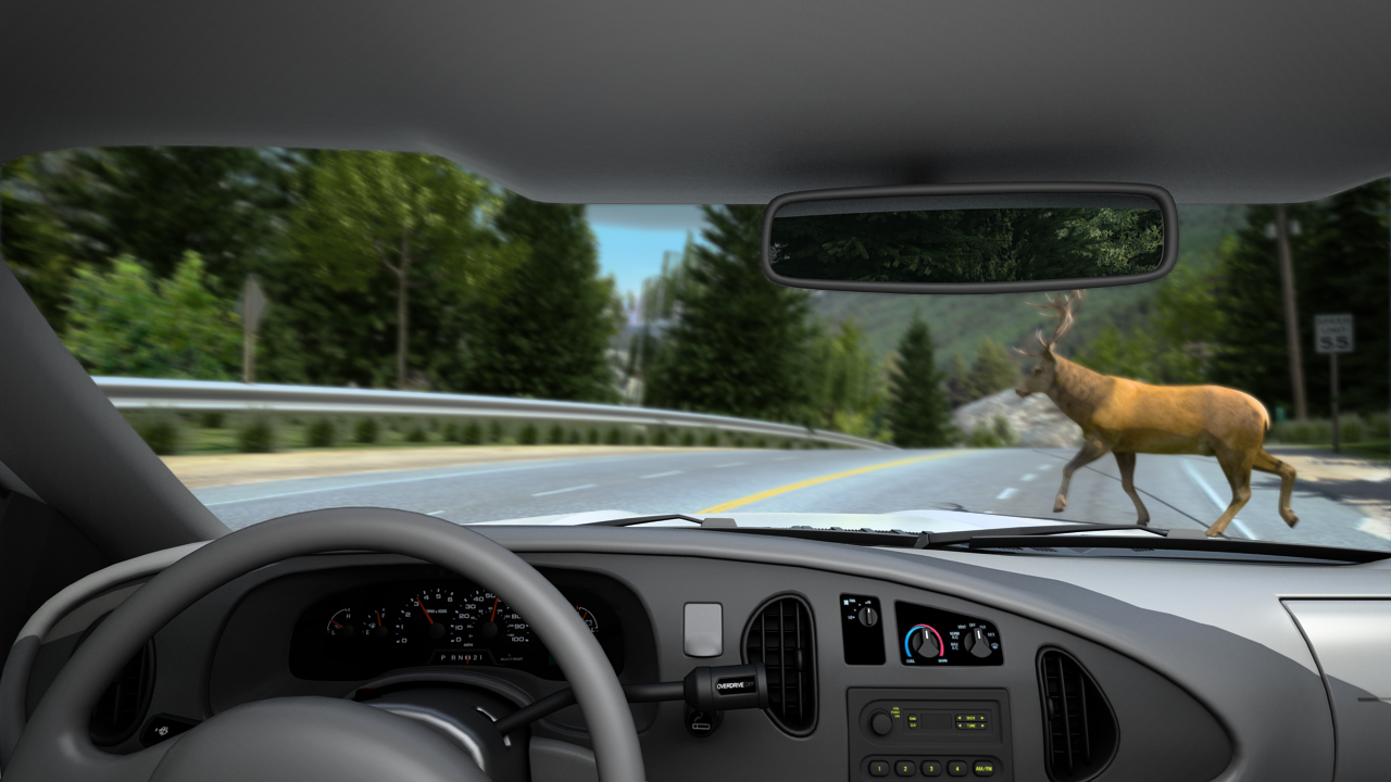 One example of a hidden hazard is an animal standing in the road around a sharp curve.