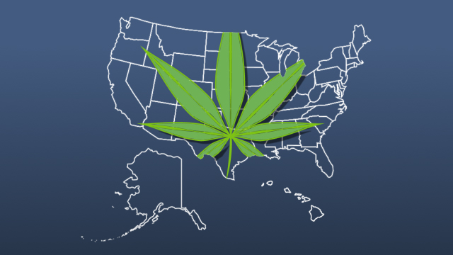 Even though marijuana use is legal in many states, it is a federal crime, and the DOT is part of the federal government