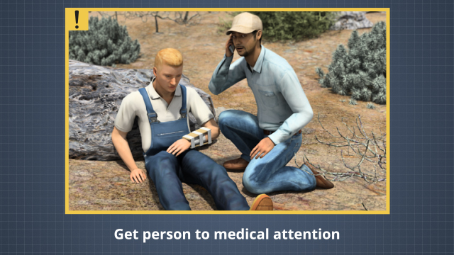 If someone is bitten by a poisonous snake, try to identify the type of snake, provide first aid, and then get the person to medical assistance.