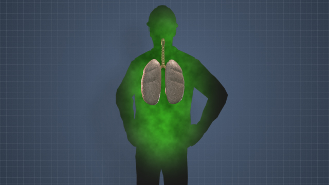 People can be exposed to poisonous toxins in many ways, including by inhaling a toxin.