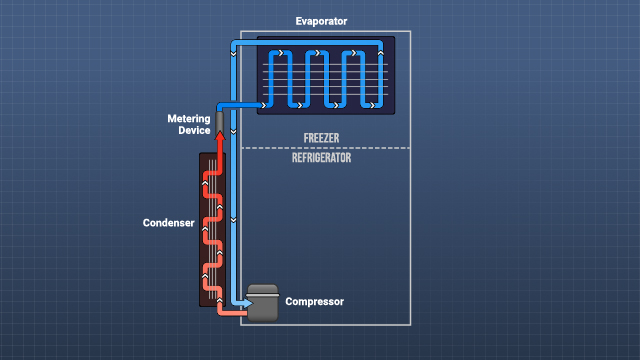 On your refrigerator, the compressor coils are usually located on the back or bottom.