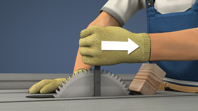 Picture of table saw basics.
