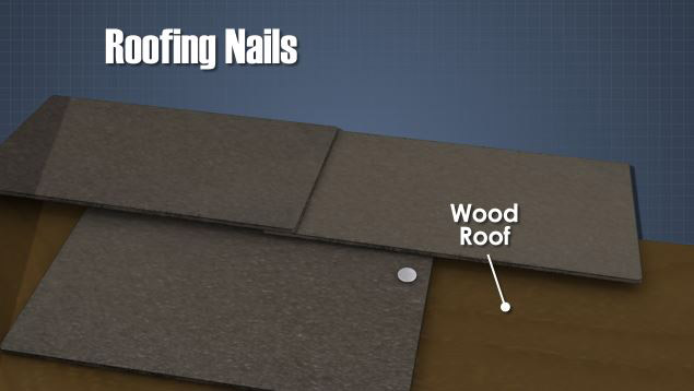 Roofing nails attaching shingles to roof