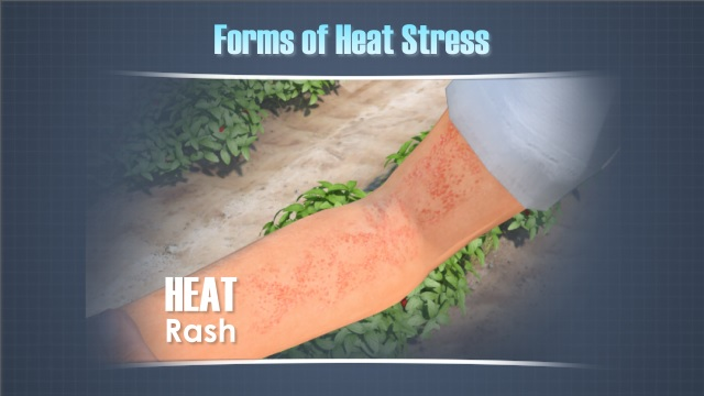 heat stress prevention training video