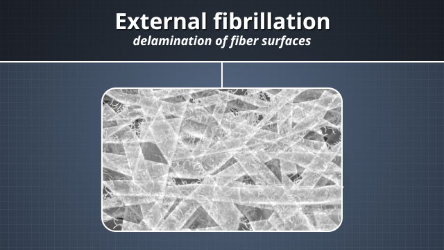 External fibrillation is the delamination of the fiber surfaces. This increases the total surface area available for bonding.