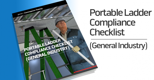 Portable Ladder General Industry Compliance Checklist Image