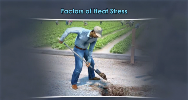Heat Stress Image