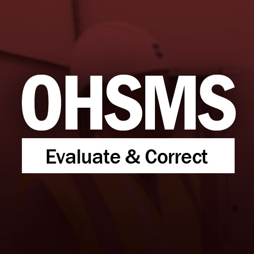 Evaluating and Correcting an OHSMS