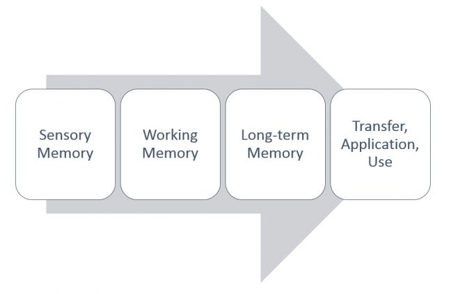 Four Stages of Learning for Paper Manufacturing Training Article Image