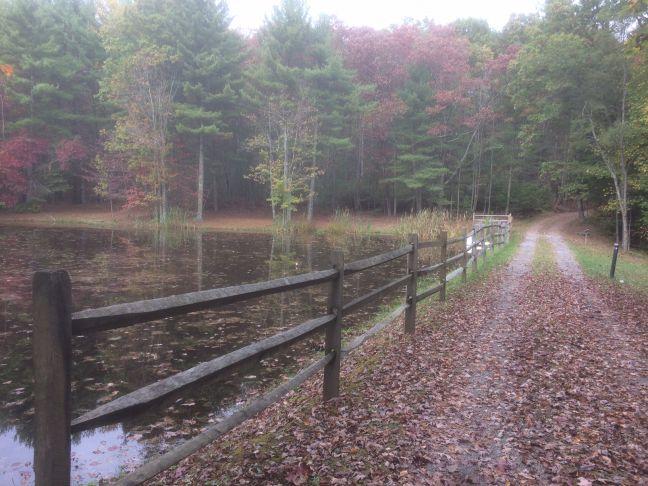 MSHA Academy Jogging Trail