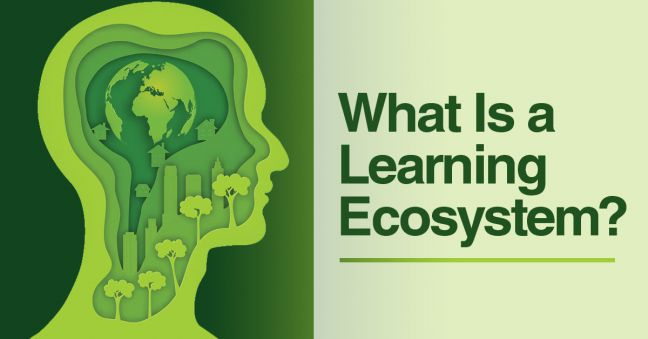 Learning Ecosystem Image