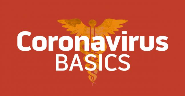 Coronavirus Basics Image