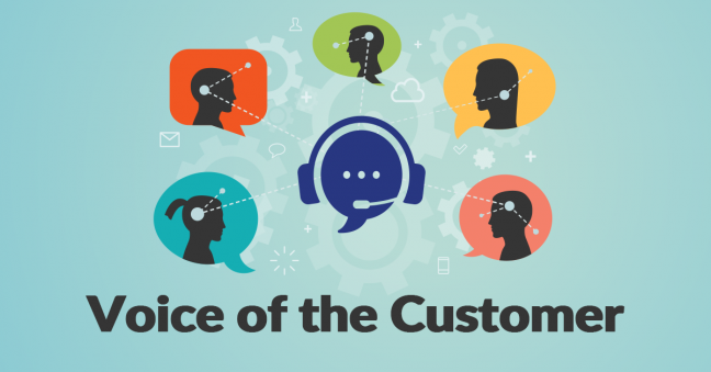 Voice of the Customer Image