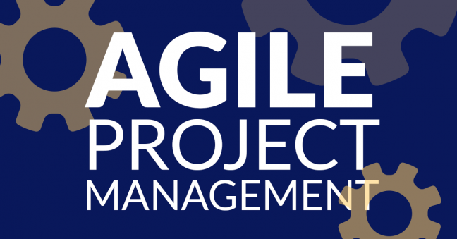 Agile Project Management Image