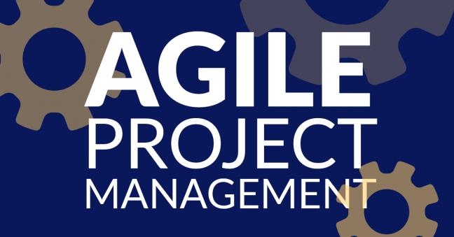 Agile Project Management Image