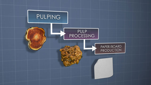 Paper Machine Winding Basics Video Convergence Pulp